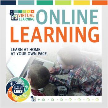 ESTEAM-VLL_icon_OnlineLearning